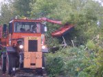 Tom Trimming trees to clear 4 mile siding.